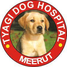 Tyagi Dog Hospital Meerut